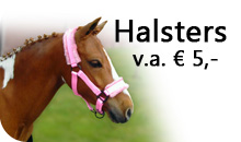 Halsters